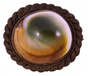 Antique Victorian Bronze Tone and Operculum Shell Brooch