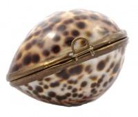 Vintage Polished Tiger Cowrie Shell Brass Frame Trinket Box